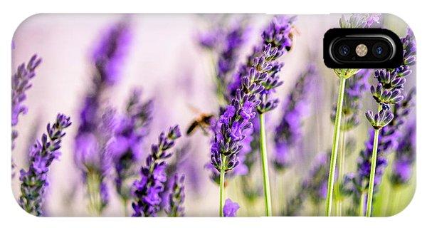 Bee iPhone Case - Summer Lavender  by Nailia Schwarz