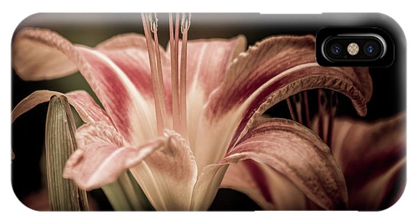 IPhone Case featuring the photograph Summer Lily by Allin Sorenson