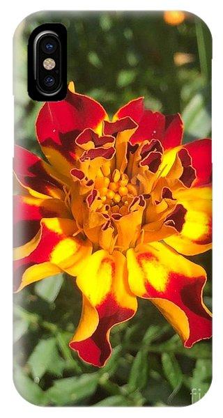 Summer Marigold IPhone Case
