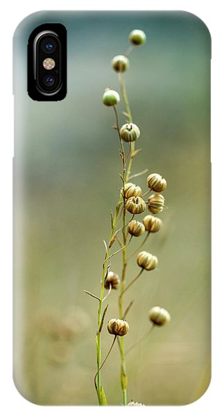 Seeds iPhone Case - Summer Meadow by Nailia Schwarz