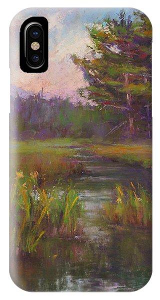 Summer Morning Beaver Marsh IPhone Case