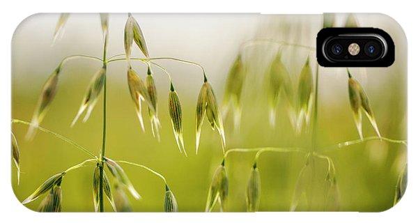 Farmland iPhone Case - Summer Oat by Nailia Schwarz