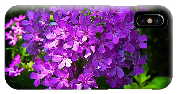 Summer Purple IPhone Case