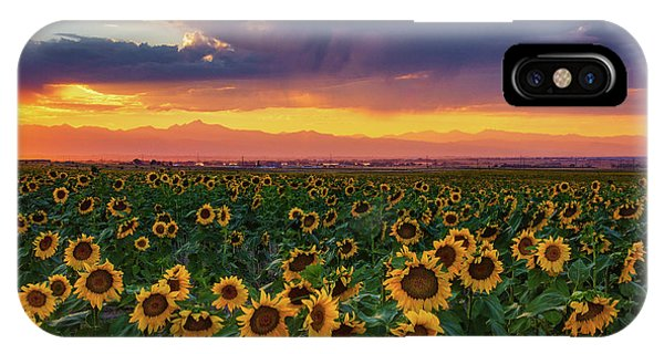 IPhone Case featuring the photograph Summer Radiance by John De Bord