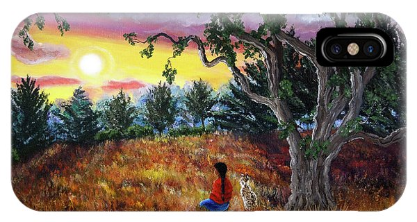 Lynx iPhone Case - Summer Sunset Meditation by Laura Iverson