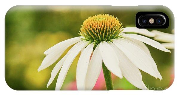 Summer Sunshine IPhone Case