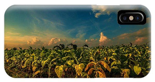 Summer Tobacco  IPhone Case