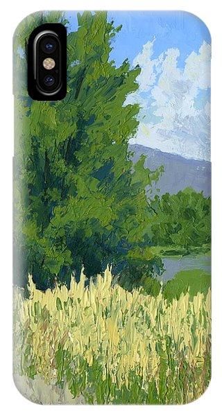 Summer Tree IPhone Case