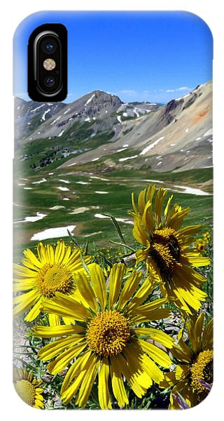 Summer Tundra IPhone Case