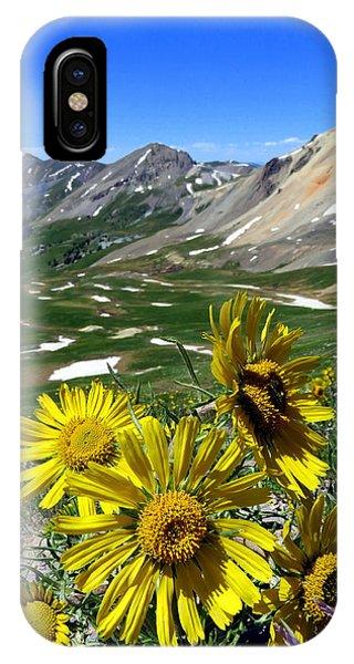 Summer Tundra IPhone Case