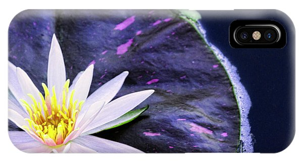 Waterlily iPhone Case - Summer Water Lily by Lindley Johnson