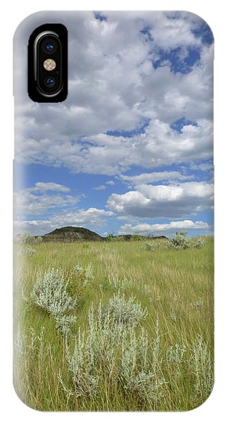 Summertime On The Prairie IPhone Case