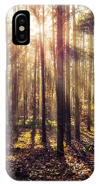 Sun Beams In The Autumn Forest IPhone Case