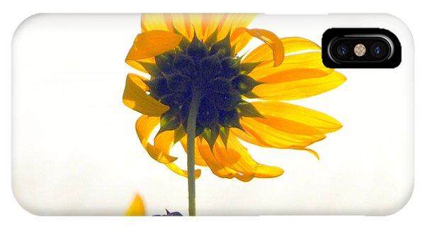 Sun Flower 101 IPhone Case