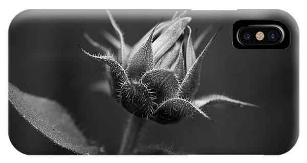 Sun Flower Blossom Bw IPhone Case