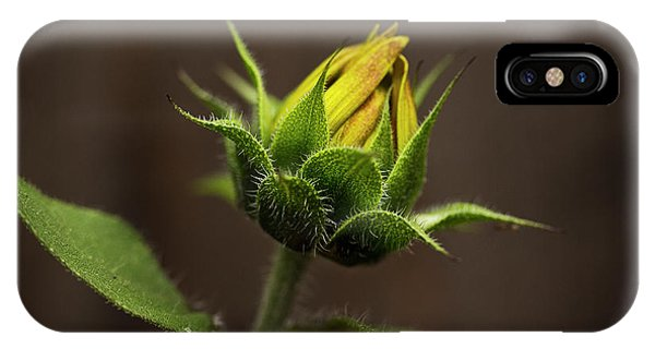 Sun Flower Blossom IPhone Case