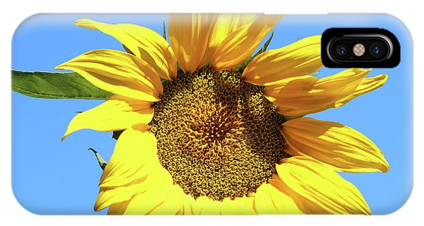 Sun In The Sky IPhone Case