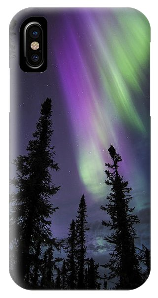 Sun-kissed Aurora Above The Spruces IPhone Case