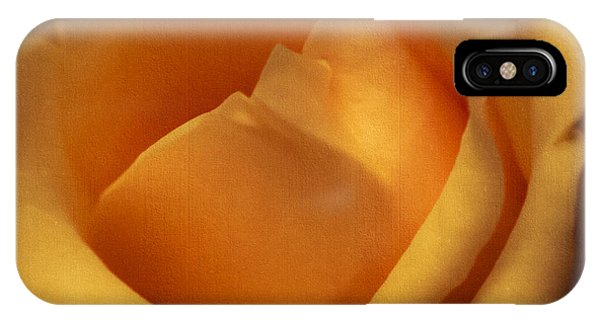 Sun-kissed Rose At Dusk IPhone Case