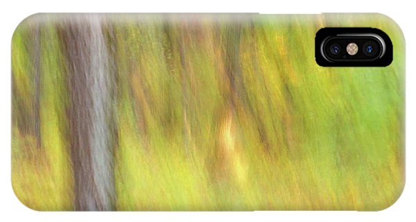 IPhone Case featuring the photograph Sun Kissed Tree by Bernhart Hochleitner