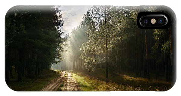 Sun Light At Pine Forest IPhone Case