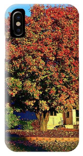 Sun-shining Autumn IPhone Case