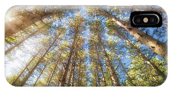 The Nature Center iPhone Case - Sun Shining Through Treetops - Retzer Nature Center by Jennifer Rondinelli Reilly - Fine Art Photography