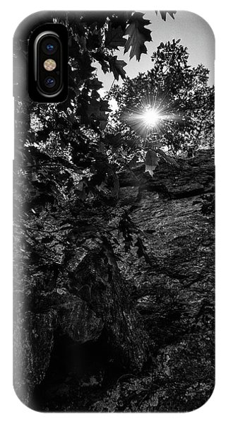 Sun Through The Trees IPhone Case
