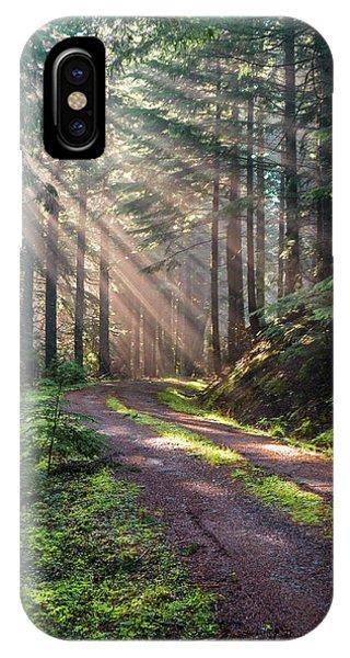 Sunbeam In Trees Portrait IPhone Case