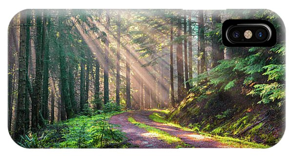 Sunbeams In Trees IPhone Case