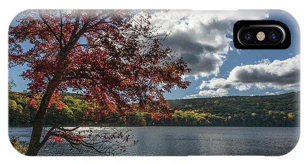Sunburst Tree At Silvermine Lake IPhone Case