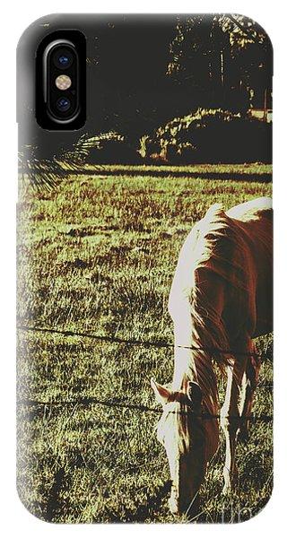 Tint iPhone Case - Sundown Horse Meadow by Jorgo Photography - Wall Art Gallery