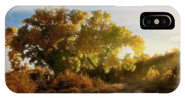Sundown, Rio Grande Bosque, New Mexico IPhone Case