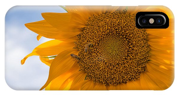 Sunflower And The Bee  IPhone Case