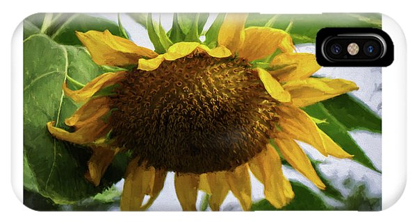 Sunflower Art II IPhone Case