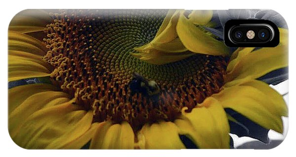 IPhone Case featuring the photograph Sunflower Bee by Richard Ricci