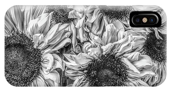 Sunflower Line Drawing : Black and white sunflower iphone cases fine art america