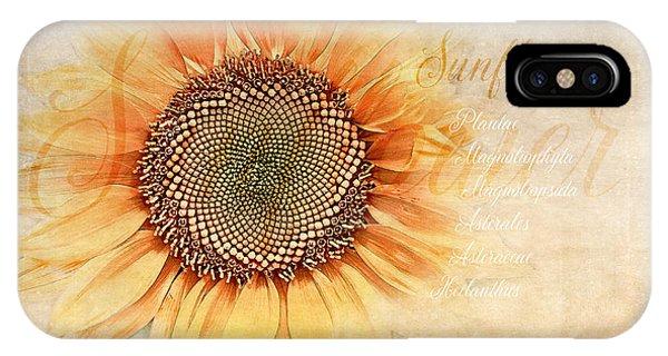 Sunflower iPhone Case - Sunflower Classification by Terry Davis