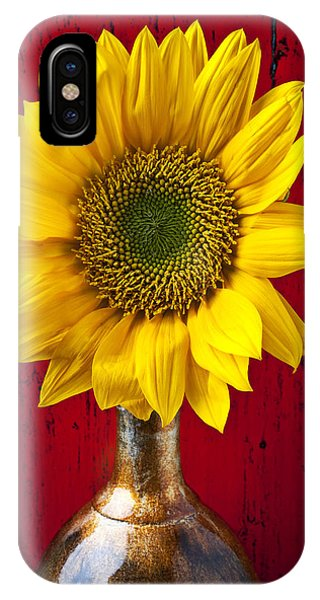 Sunflower Close Up IPhone Case