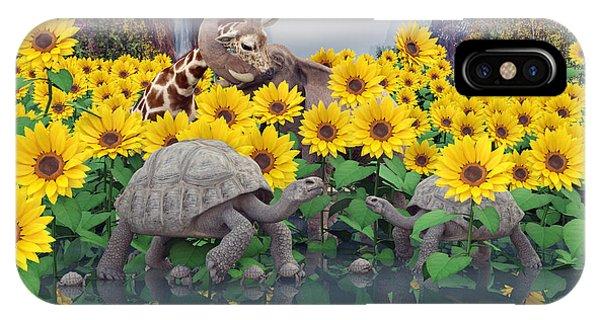 Sunflower iPhone Case - Sunflower Daydream  by Betsy Knapp