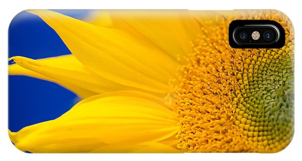 Sunflower Detail IPhone Case