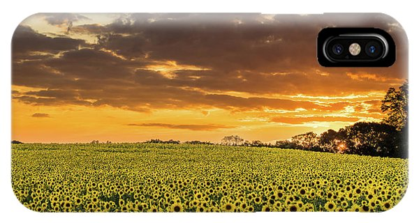 Sunflower Fields Sunset IPhone Case