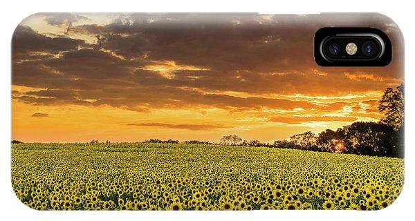 Sunflower Fields Sunset IPhone Case