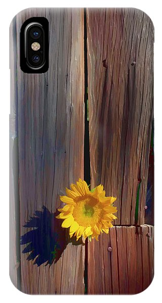 Sunflower Seeds iPhone Case - Sunflower In Barn Wood by Garry Gay
