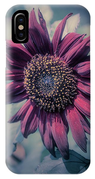 IPhone Case featuring the photograph Sunflower In Red by John Brink