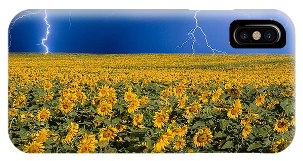 Sunflower Lightning Field  IPhone Case