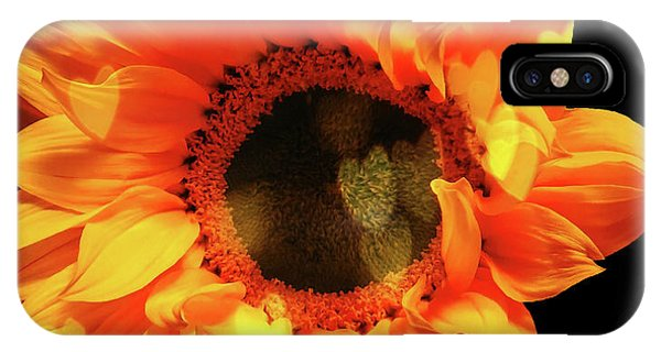 Sunflower Passion IPhone Case
