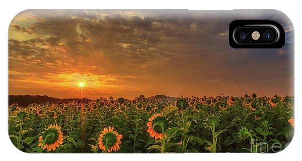 Sunflower Peak IPhone Case