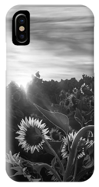 Sunflower Rise In Black And White IPhone Case