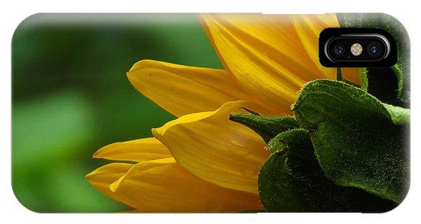 Sunflower Series I IPhone Case